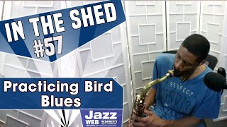 In The Shed #57 | Practicing Bird Blues